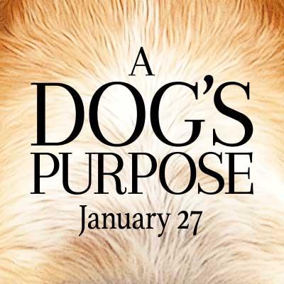 A Dog S Purpose Kj Apa