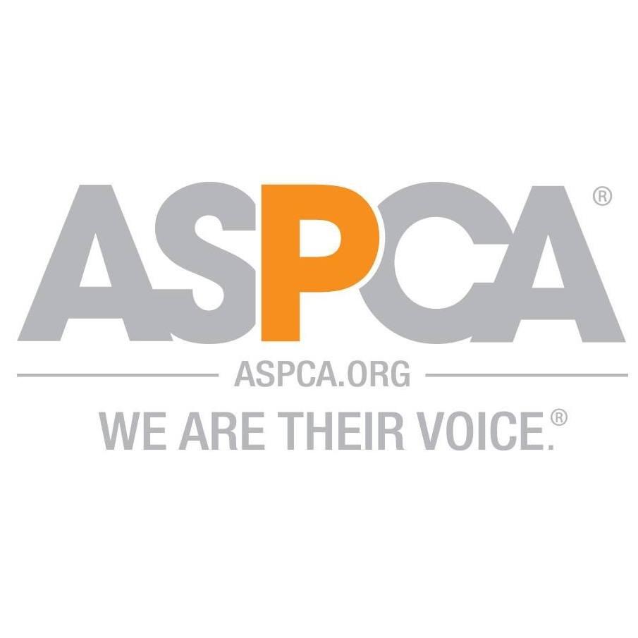 aspca's avatar
