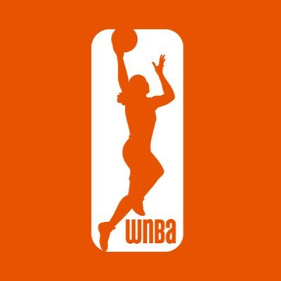 Image result for wnba